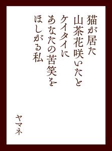 〈最優秀歌〉猫が居た山茶花咲いたとケイタイに あなたの苦笑をほしがる私(ヤマネ)
